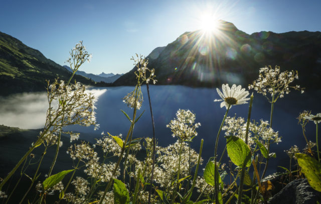 Formarinsee am Morgen © Dietmar Denger / Vorarlberg Tourismus