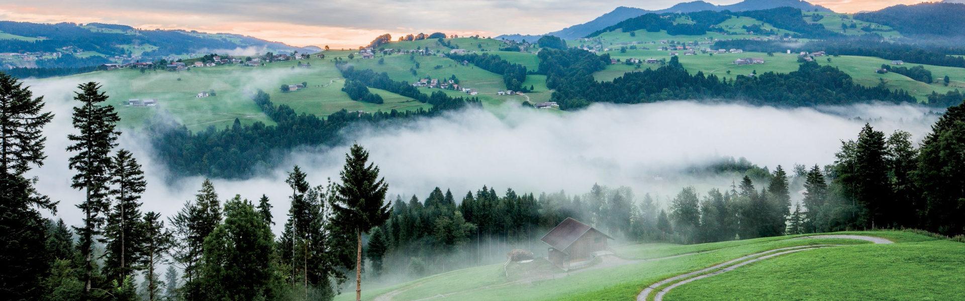 Bregenzerwald © Dietmar Walser / Vorarlberg Tourismus