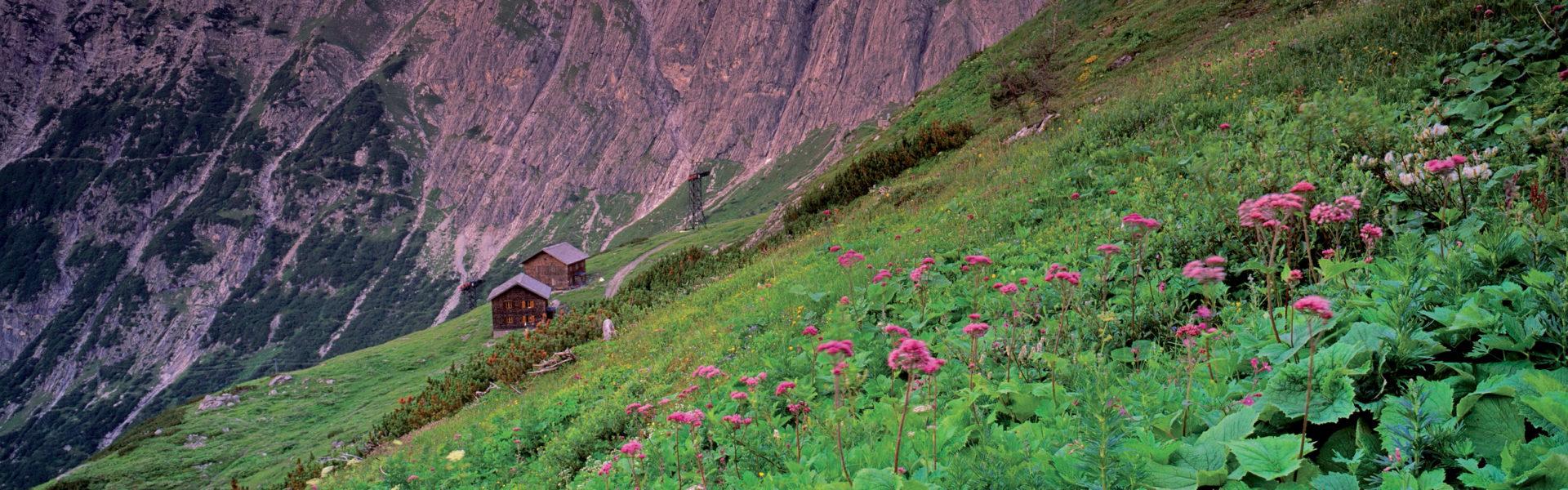 Genussvolle Lebenskunst, die Essenz der Marke Vorarlberg; Foto: Brandnertal © Popp Hackner / Vorarlberg Tourismus
