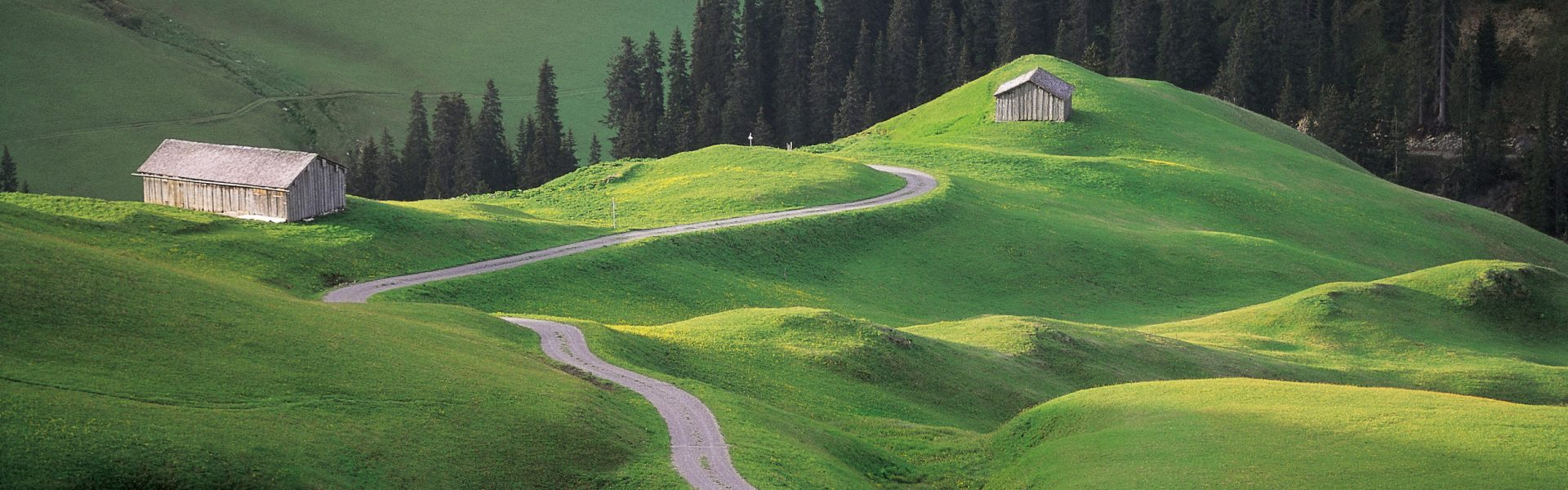 Alpweg Arlberg © Peter Mathis / Vorarlberg Tourismus